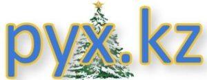 Pyx.kz — ақпарат агенттігі